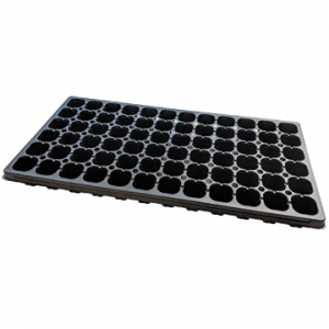 Plug Tray 72 Cell 72H
