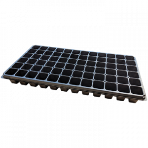 Plug Tray 72 Cell 72T