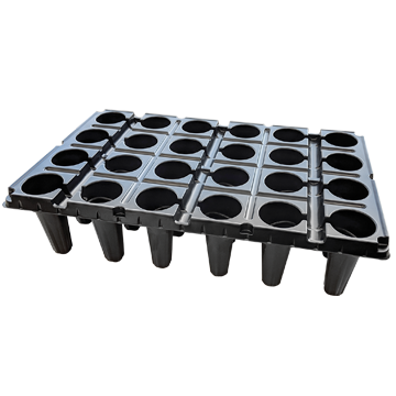 24 Cell Strawberry Tray 1020
